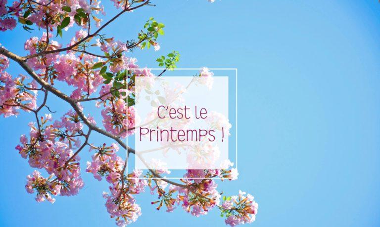 Read more about the article Le printemps est prévisible … et vos opportunités le sont-elles autant ?